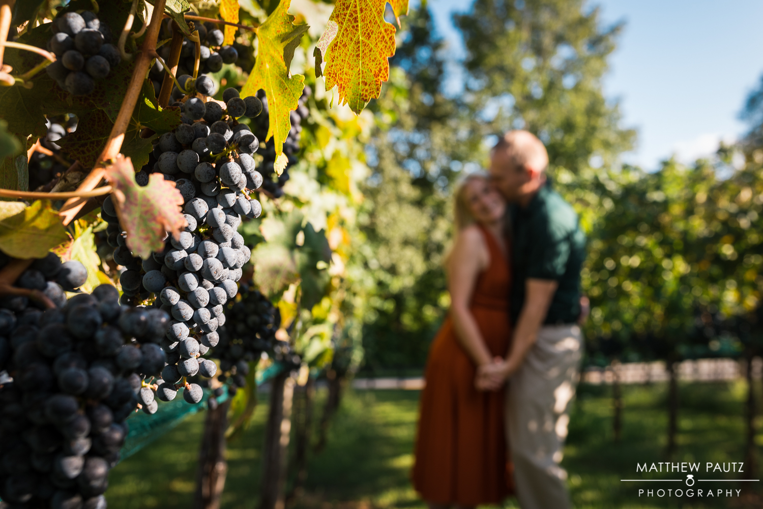 Silver Fork Winery Engagement Photos