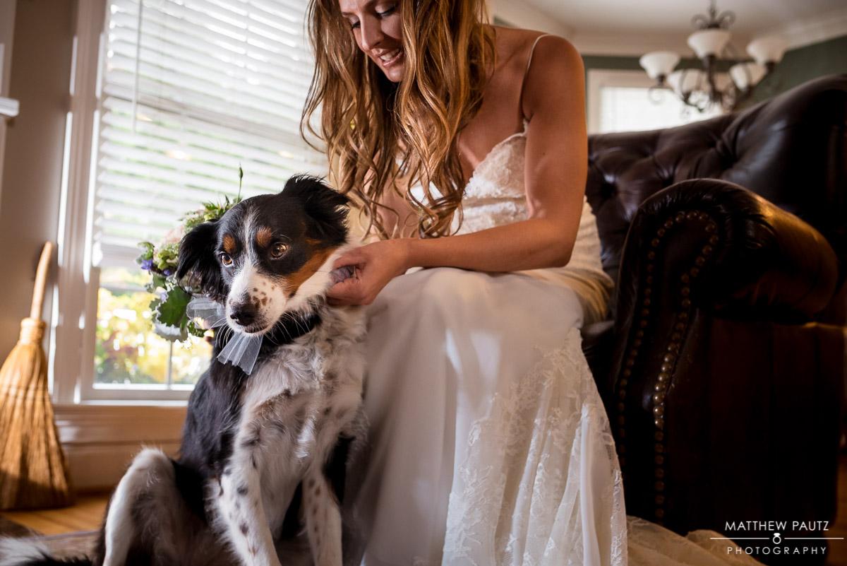 Bridal portrait with dog